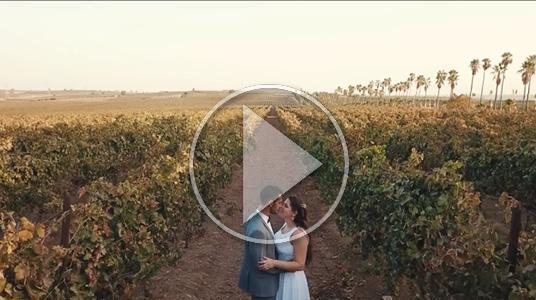 צלם לחתונה אופק וחיים - תקציר